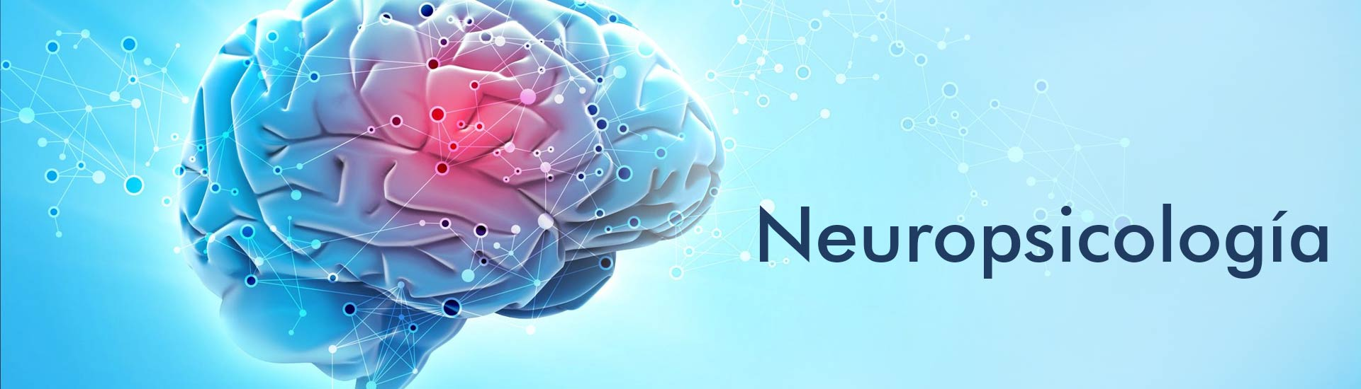 Sercrecer neuropsicología